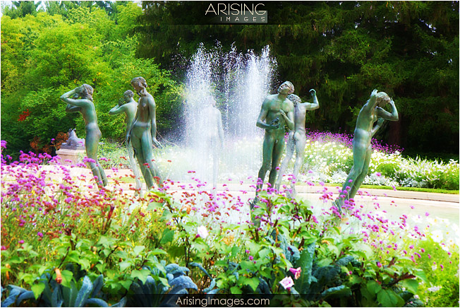 fountains near cranbrook art museum