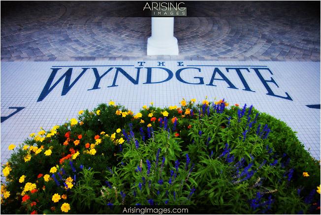 Wyndgate back patio tiling