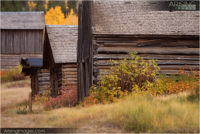Fall in Ashcroft, CO