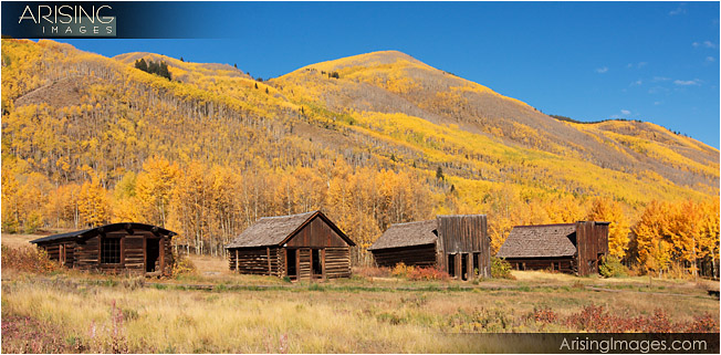 Fall color in Ashcroft, CO ghost town