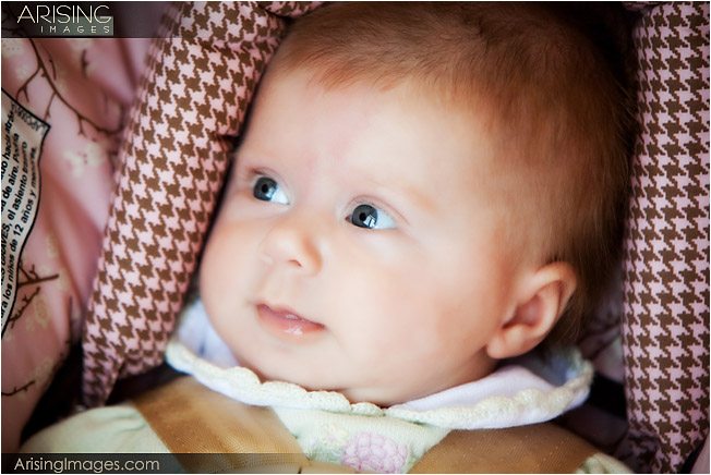 creative baby photos in rochester hills, MI