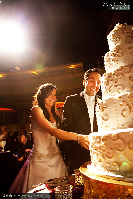 cutting the wedding cake at the detroit opera house