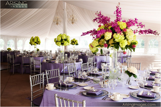 blossoms florist, chair covers and linens, meadow brook tent wedding decor
