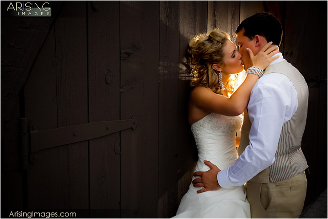 wedding photos at meadowbrook mansion