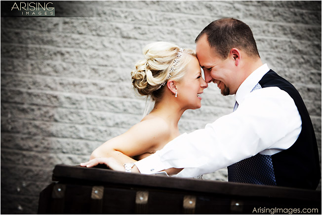 best wedding photographer in rochester, mi
