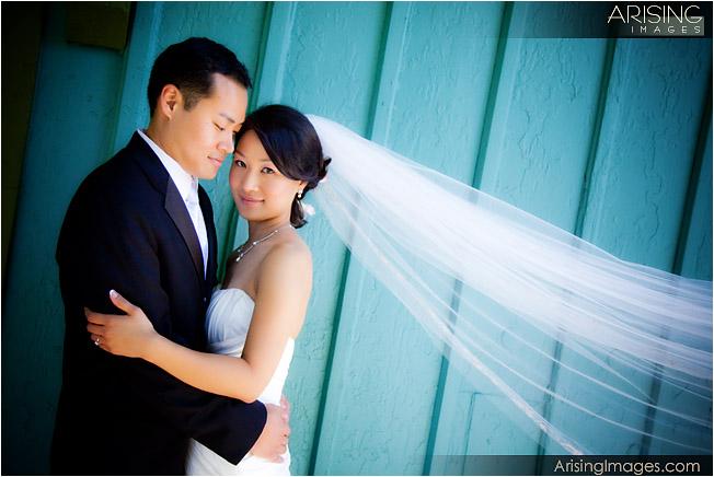 rochester, mi wedding photography