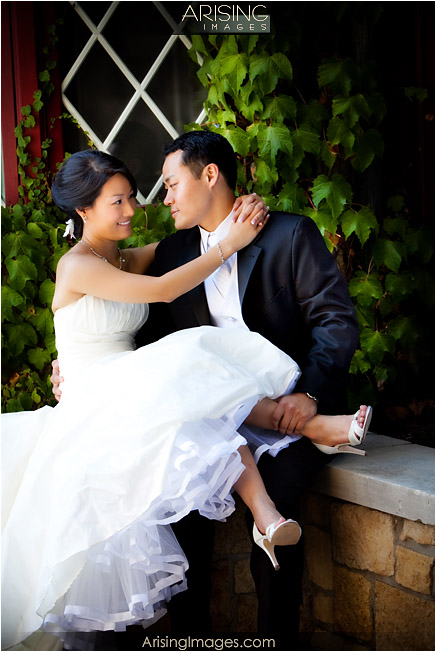 wedding photos near the royal park hotel in rochester, mi