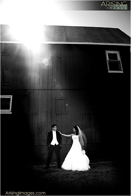 unique and incredible wedding photography in michigan