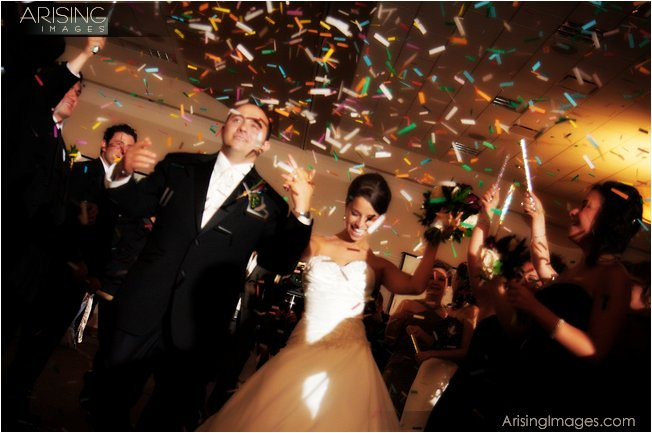 best wedding photographer in novi, mi