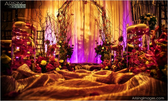 vivianos flowers and arising images photography