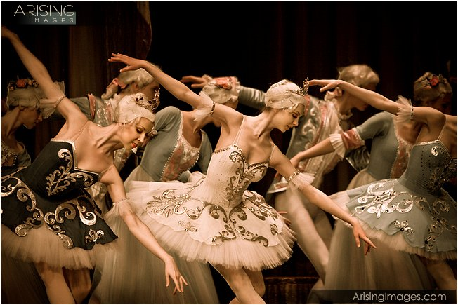 ballet at the detroit opera house