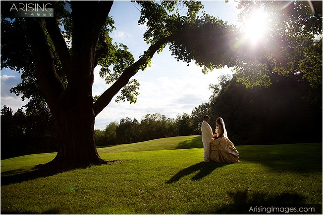 wedding meadow brook oakland university mi
