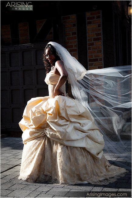 best wedding photographer meadowbrook mi