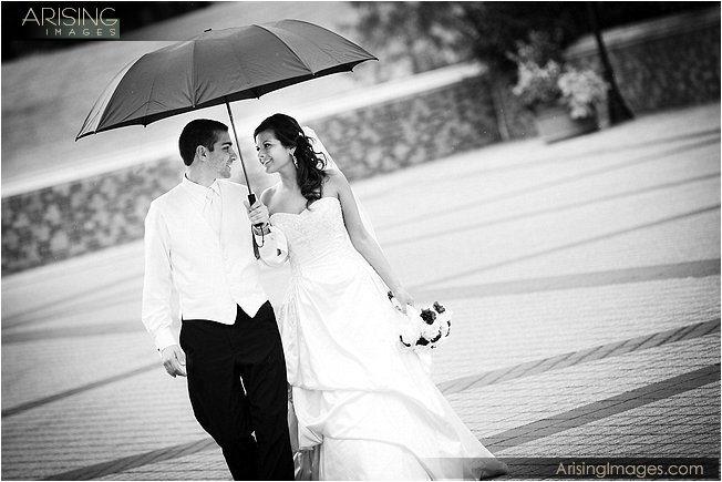 wedding at a mansion MI