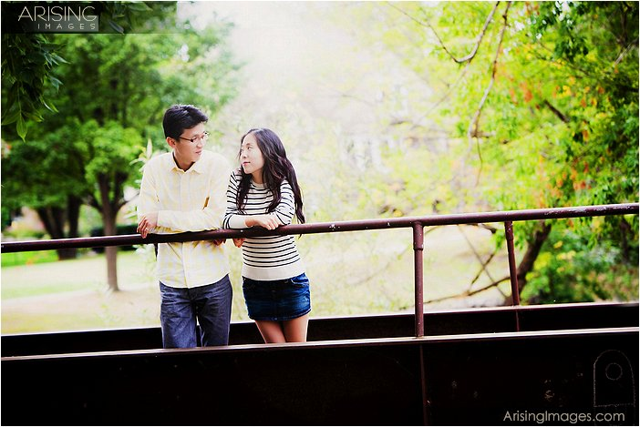 artistic engagement photography sterling heights mi