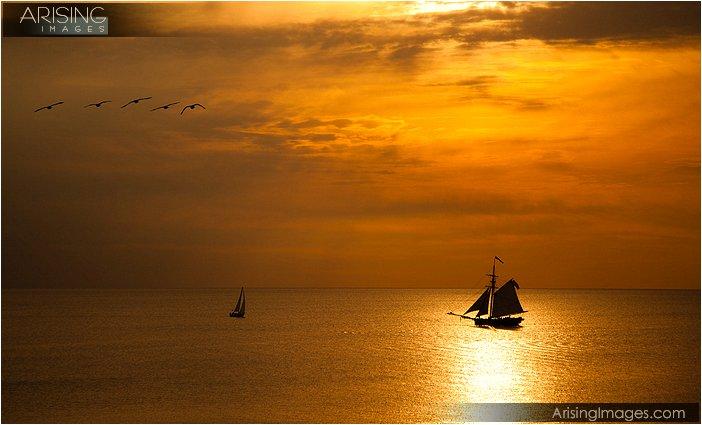 south haven, michigan sailboat at sunset
