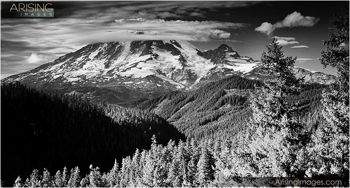 Mt. Rainier from the lookout point on highway 12