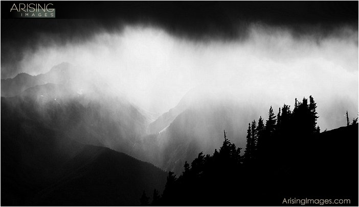 dramatic clouds on top of hurricane ridge in olympic national park in washington