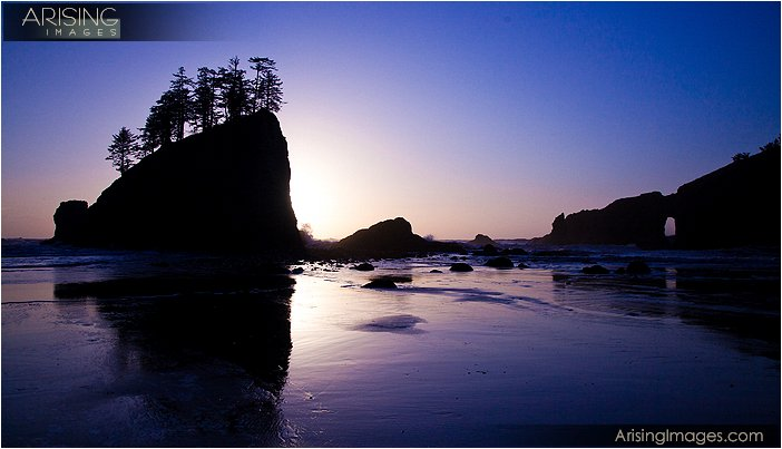 evening light at second beach in olympic national park in washington