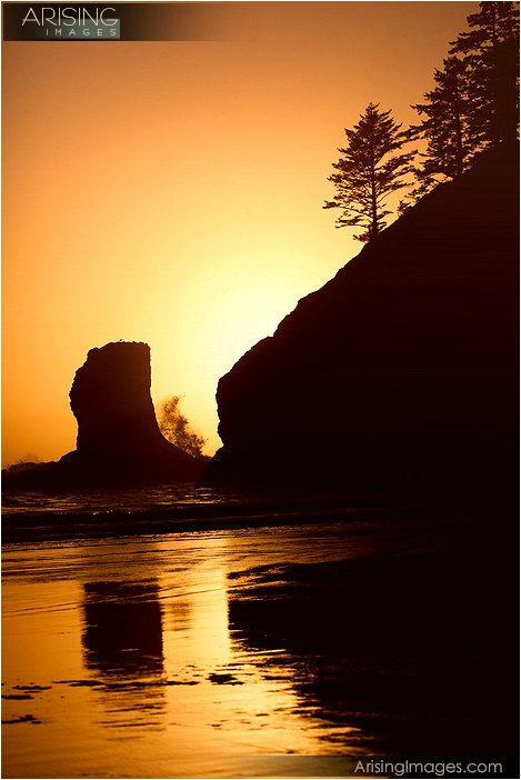 sun setting behind the sea stacks at second beach in olympic national park in washington
