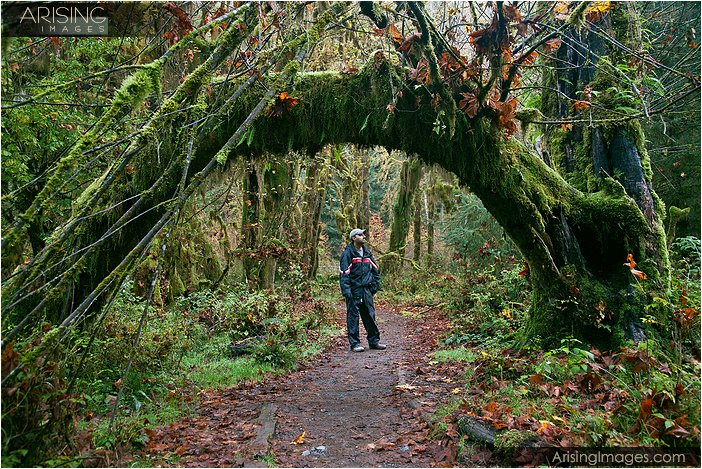 self-portrait of Prem in the Hoh Rain Forest