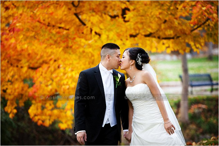 gorgeous oakland county, michigan wedding photography