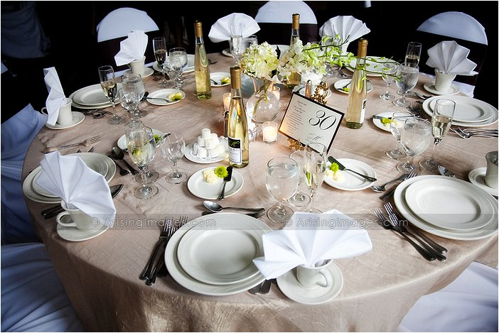 Gorgeous Wedding Photography At Italian American Club Mi