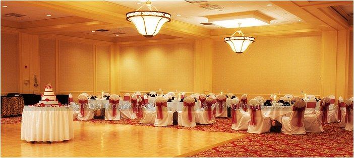 indoor michigan wedding reception photography at the MET hotel, MI