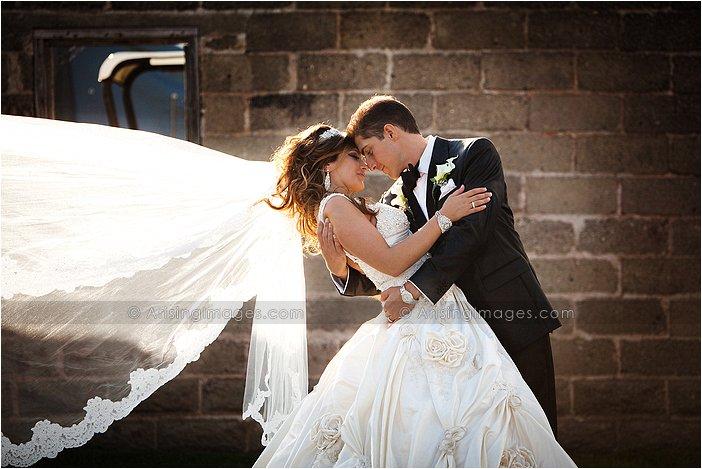 elegant wedding photos in michigan at van hoosen farms