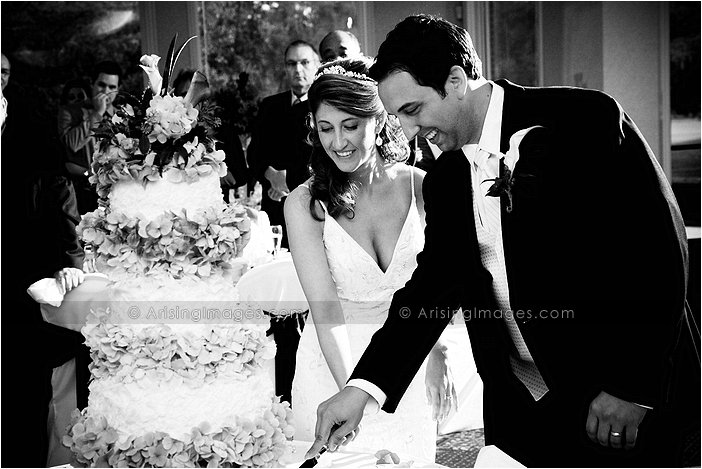 dazzling wedding photography in mt. clemens, michigan