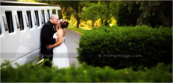 amazing wedding photographer in saline, Mi