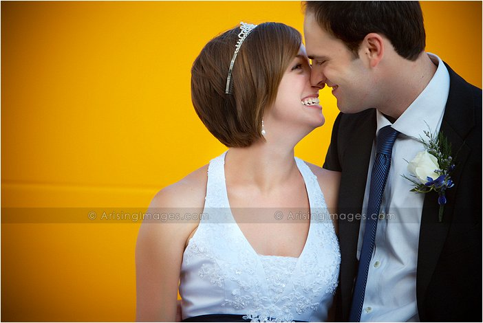 adorable wedding pictures at southfield civic center