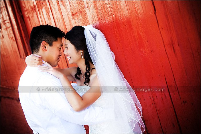 cute wedding photography in downtown rochester, mi