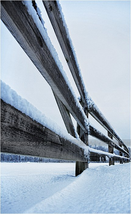 snow covered fence in a michigan winter