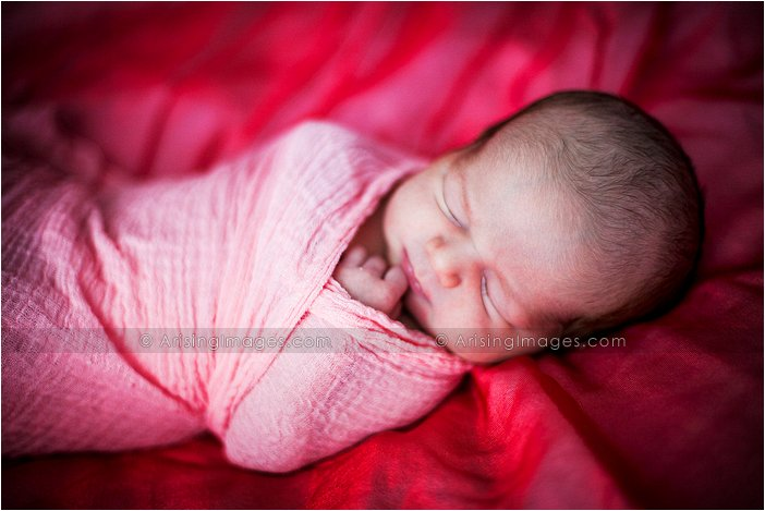 artistic photography for new born babies in michigan