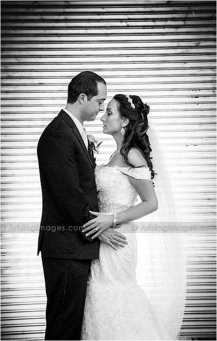traditional greek wedding photography in michigan