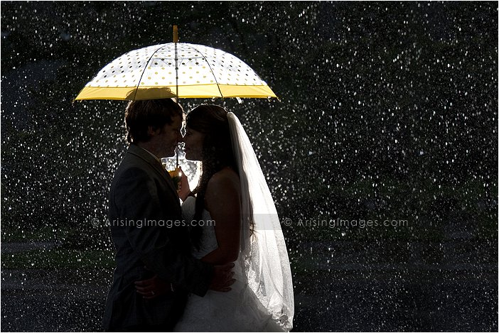 detroit, mi best wedding photographer