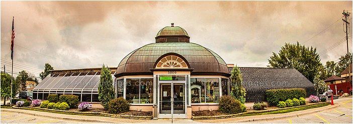 viviano flower shop, michigan photography