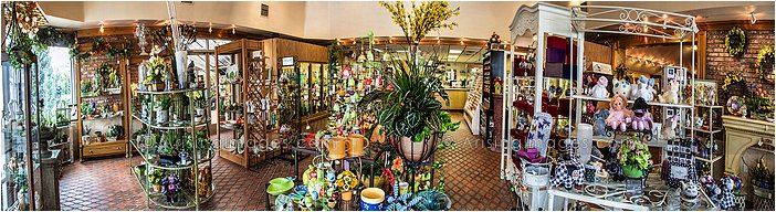 photography of viviano flower shop michigan
