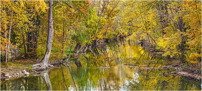 fall color photography in michigan