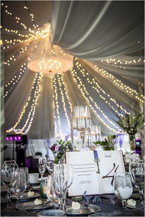 best wedding photographer in rochester michigan