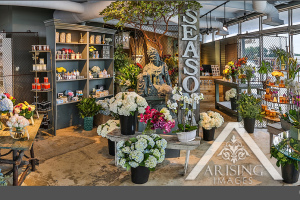 blossoms-flower-shop-birmingham-michigan-1