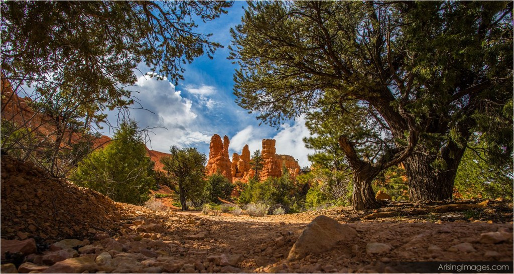viewpoint near bryce national park