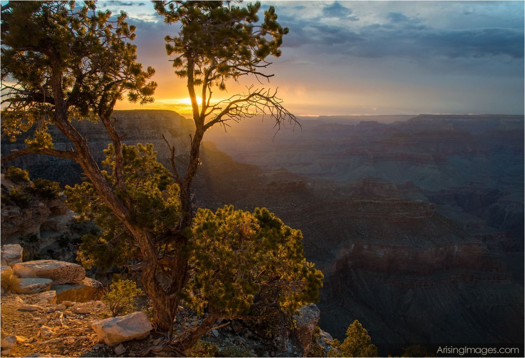 yavapai point sunset at the grand canyon