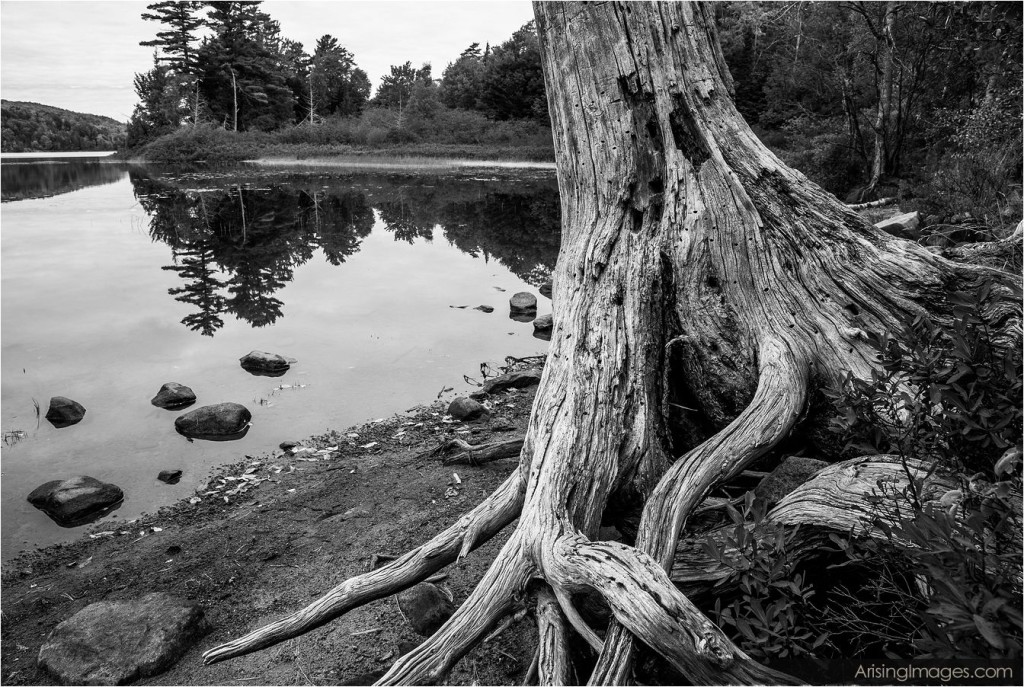 Deer Lake, MI
