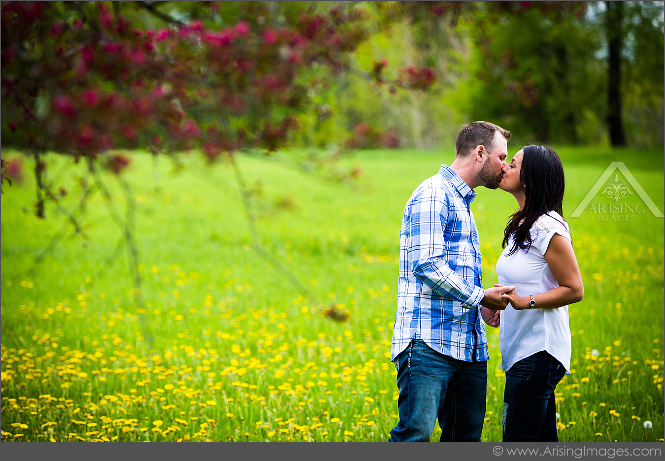 best michigan engagement photographers