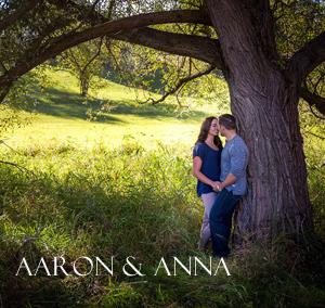 Michigan Engagement Photography