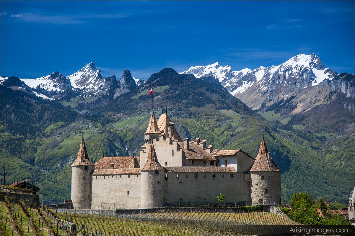 Chateau D'Aigle Switzerland